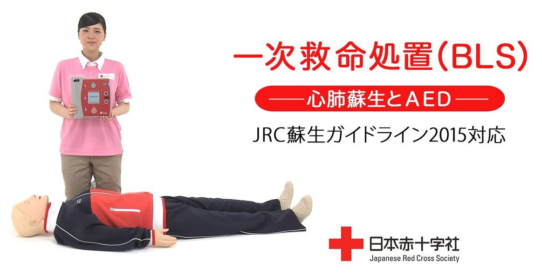 新たな内容「一次救命処置」講習を全国で一斉に開始(日本赤十字社)